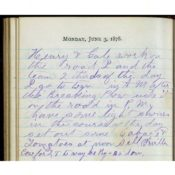 1878 Diary Entry of Farmer Newton S. Persons