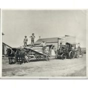 Steam-Powered Threshing Crew, 1920